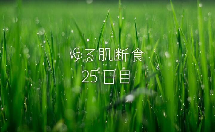 湯シャンに苦戦-ゆる肌断食日記25日目-
