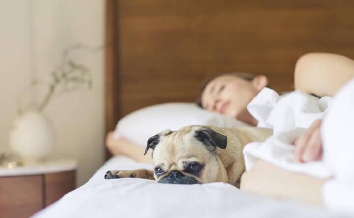 睡眠が最高のスキンケアになる理由