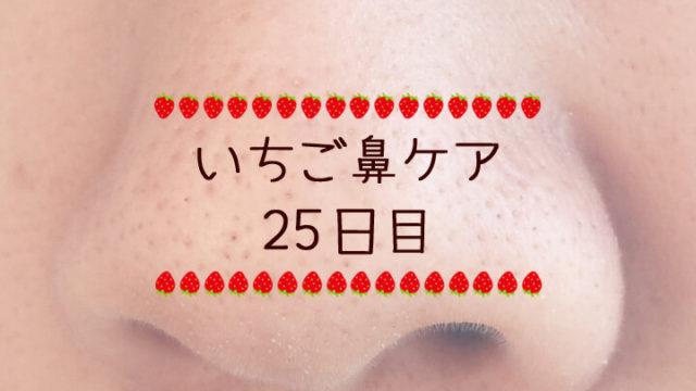 オイルケア停滞期-いちご鼻ケア日記25日目-
