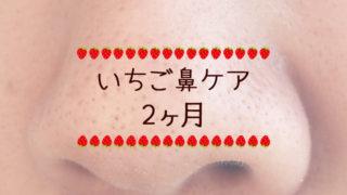 オイルケア中断-いちご鼻ケア日記2ヶ月-