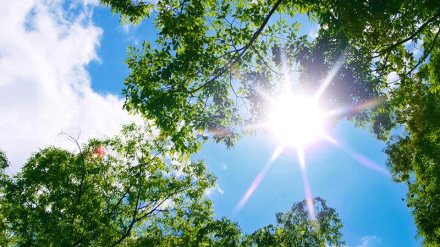 熱中症対策にもなる紫外線対策まとめ