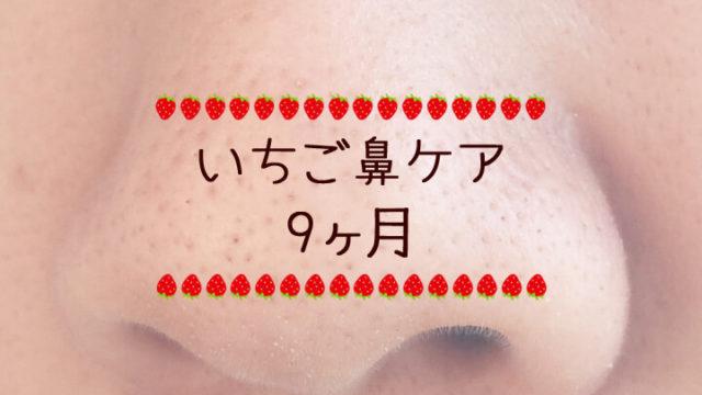 ついに鼻の際に変化が-いちご鼻ケア日記9ヶ月-