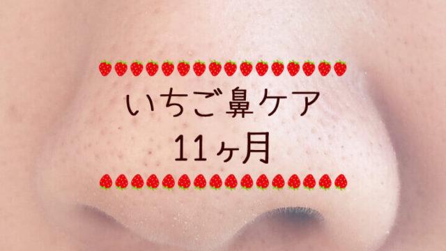 大きな角栓ができてしまった-いちご鼻ケア日記11ヶ月-